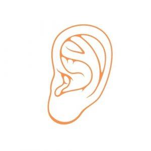 ENT-ear